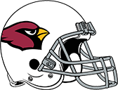 Arizona Cardinals computer